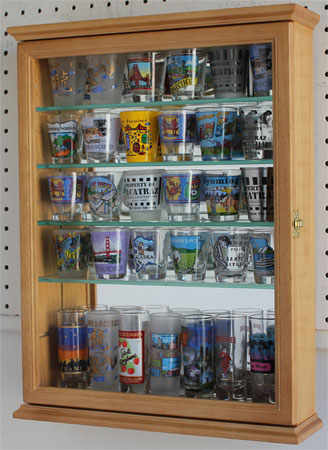 Small Wall Curio Cabinet Display Case Shadow Box For